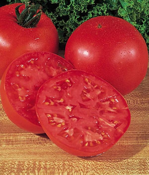 Tomato Burpee's Big Boy