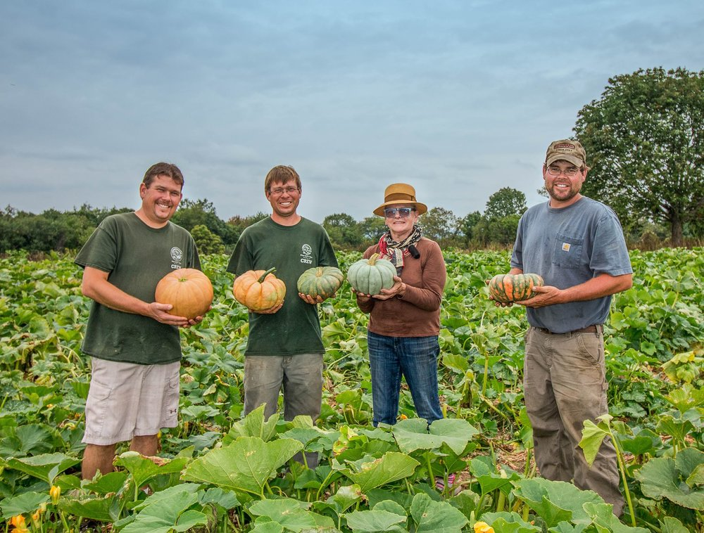 Brothers & Farmers: Michael, Benjamin, Stephen Berecz with Carole Peck of Good New's Cafe. Photo taken in our fall squash field 2016.