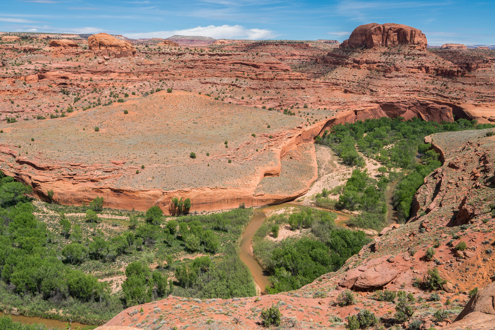 Guide To Grand Staircase Escalante National Monument Day Hikes