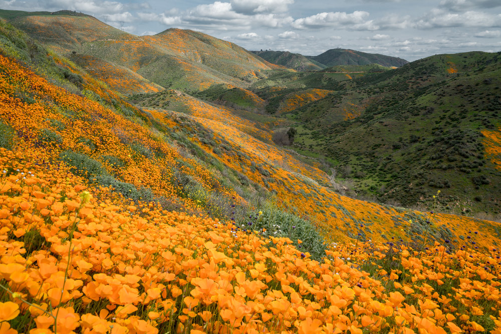 Walker Canyon, California 2019