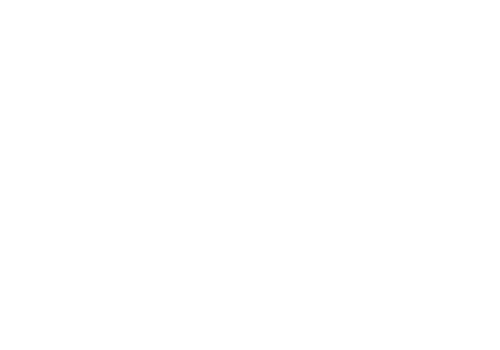 primecore solutions