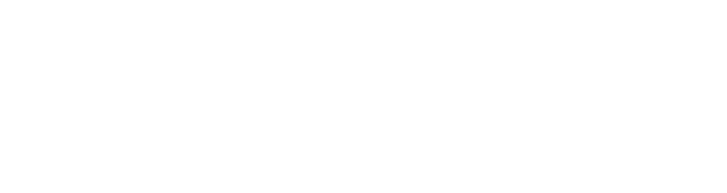The Movement Team