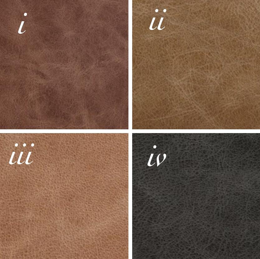 leather options.jpg