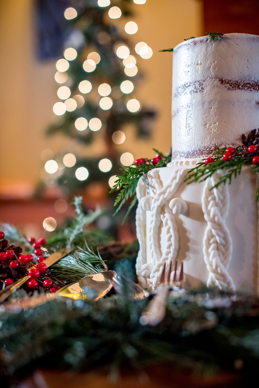 Chula Vista Christmas Wedding by Peer Canvas Photography & Films - 0060.jpg