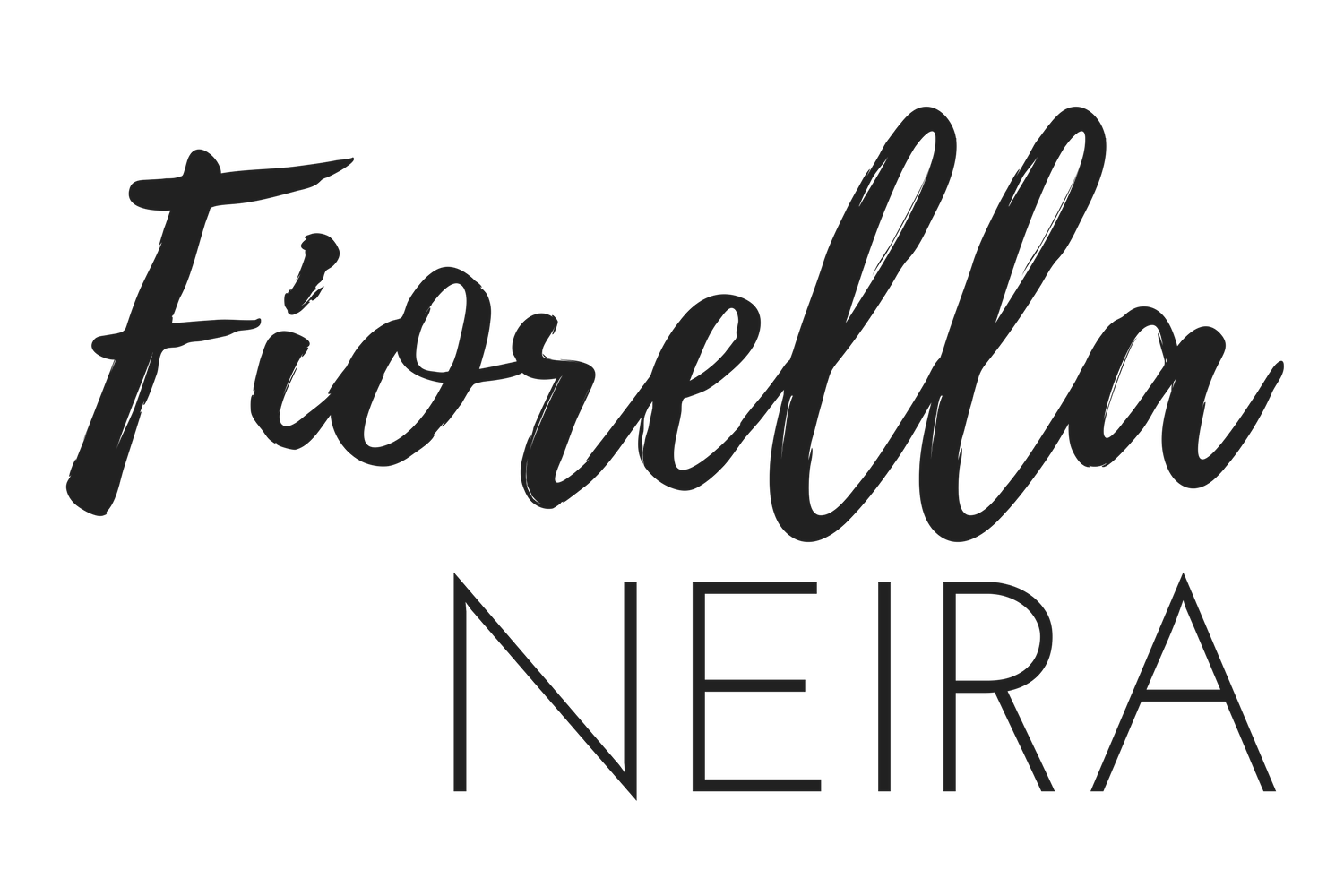 Fiorella Neira - Neira Event Group