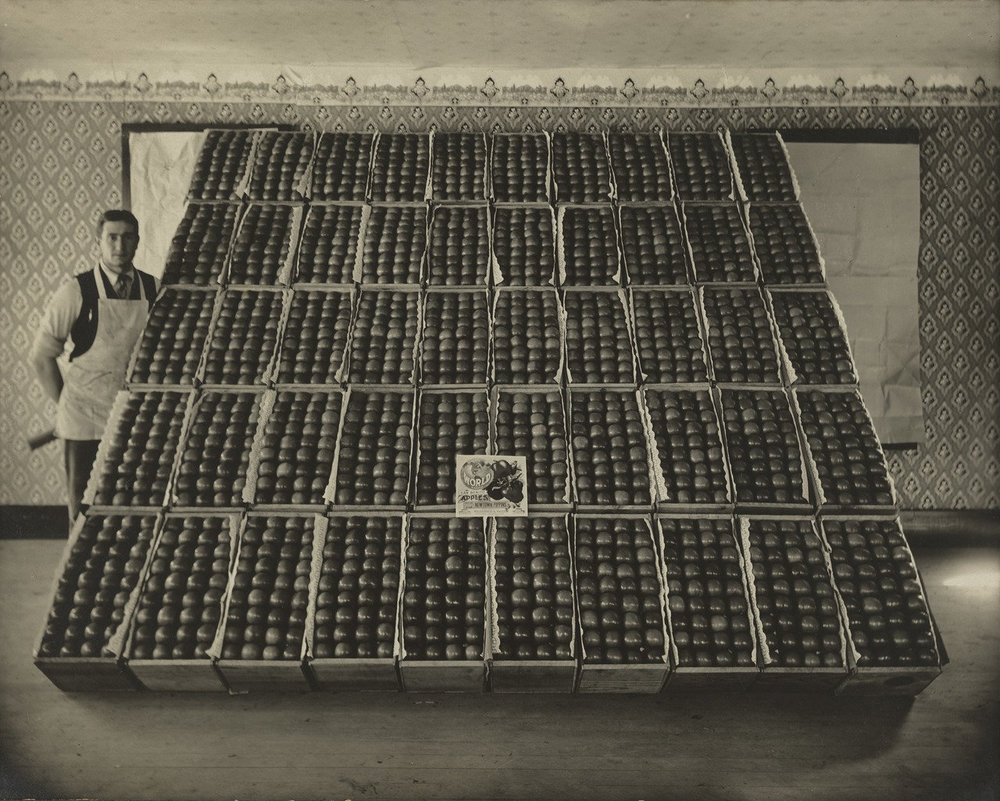 "H.H. Blakesly.  Newton Pippin Apples . 1925. Gelatin silver print, 7 3/4 x 9 3/4"" (19.7 x 24.8 cm). The Museum of Modern Art, New York. Gift of Jeffrey Fraenkel in memory of John Szarkowski"