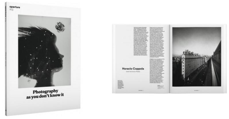 Regina Silveira: Enigmas.Aperture #215 (Summer 2014). pp. 106-109