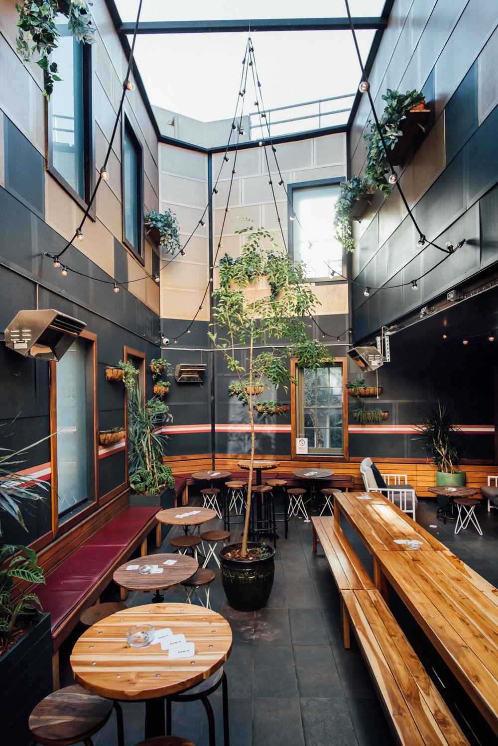 Darlo Bar Interior Daytime 5