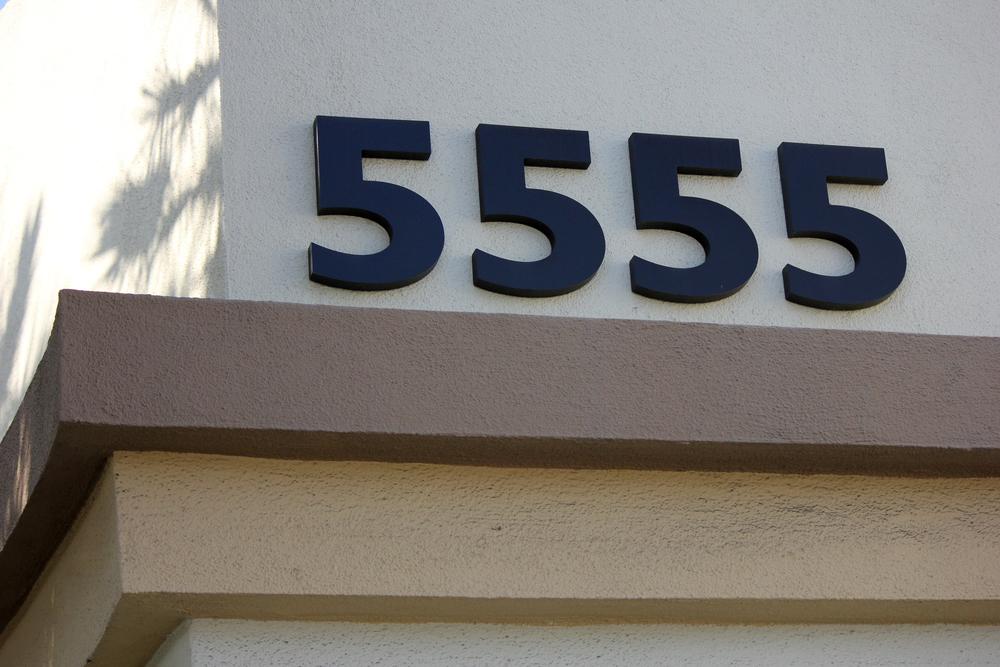 5555.jpg