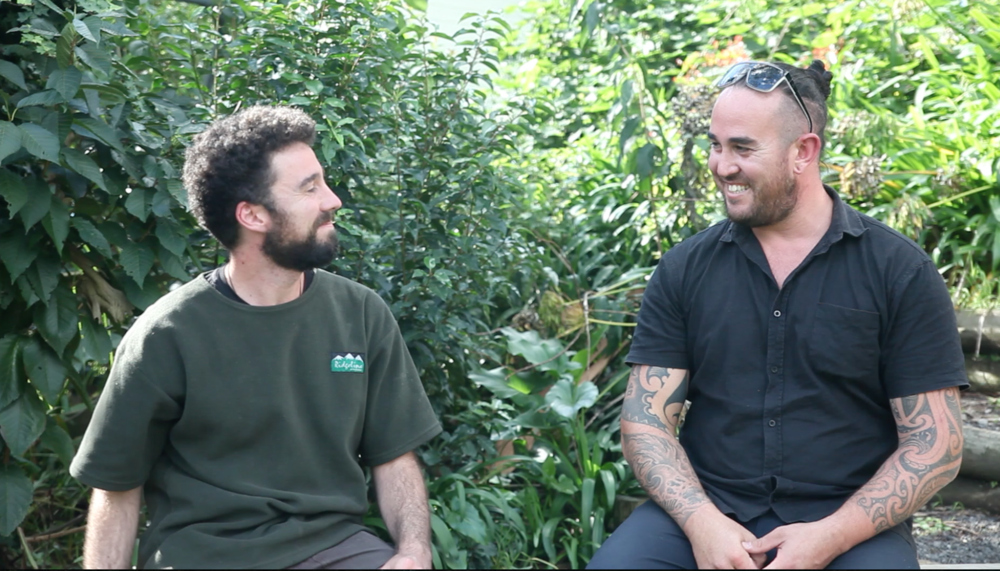 Interview with Adam Sharplin at his home in Welcome Bay, Tauranga.