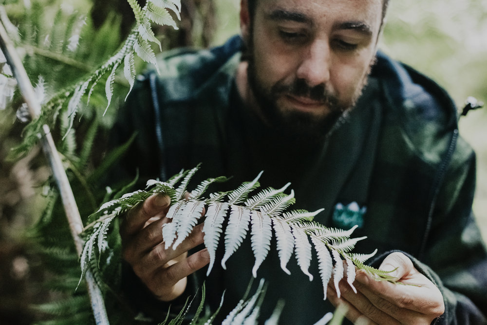 Observing the intricacies of a fern. Photo by  Amandala Photography .
