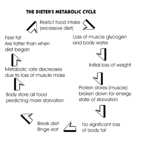 """Diet Cycle"""