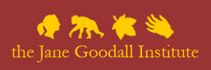 SPONSOR_logo_the jane godall institute.jpg