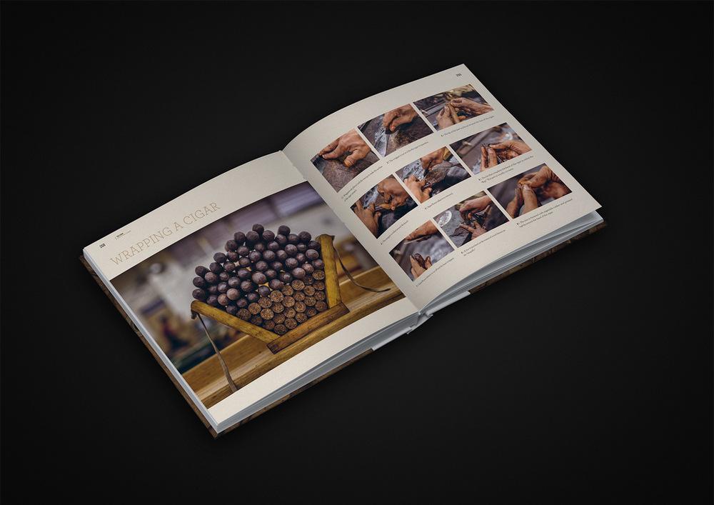 The Cigar 03.jpg
