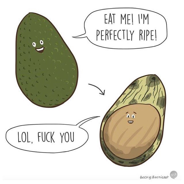 Avocado struggles 😂