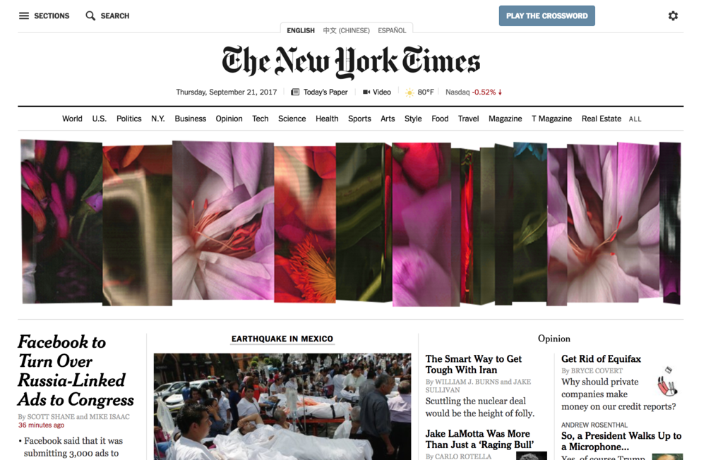 NYT-withgreen-screen-green-gallery.png