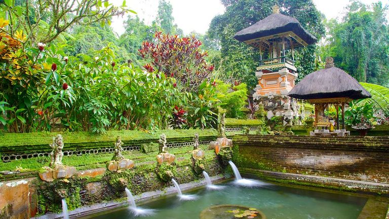 We'll do a water purification ritual at Sebatu Temple to start our week off with intention.