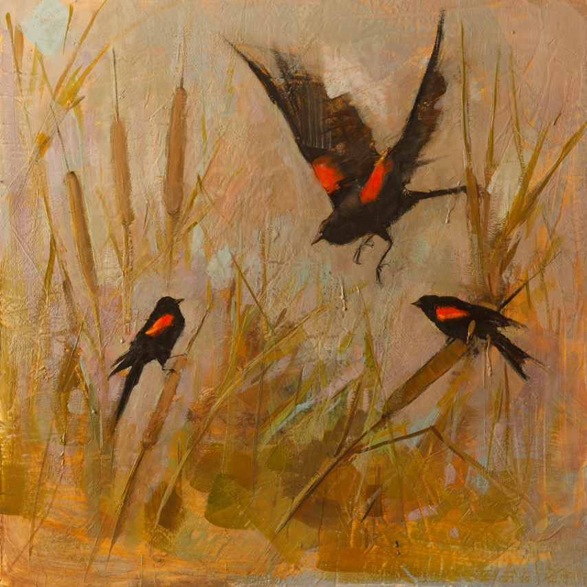 A Chorus of Blackbirds