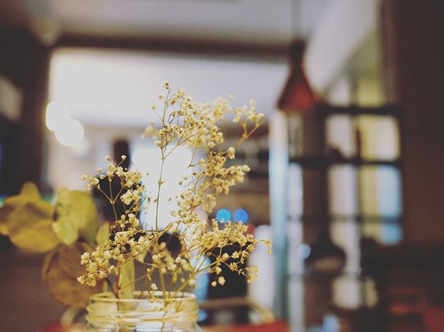 Winter is really beautiful and cosy and all that, but we still miss being able to pick wild flowers for our tables. #tb __________⛾ #6monthstilsummer #bergsson #reykjavik #flowers #wildflowers #wildcozyflowers