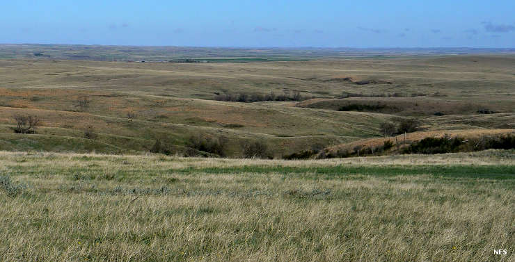 The  Grand River National Grassland , what the landscape would have looked like where Hugh Glass was attacked by a bear.