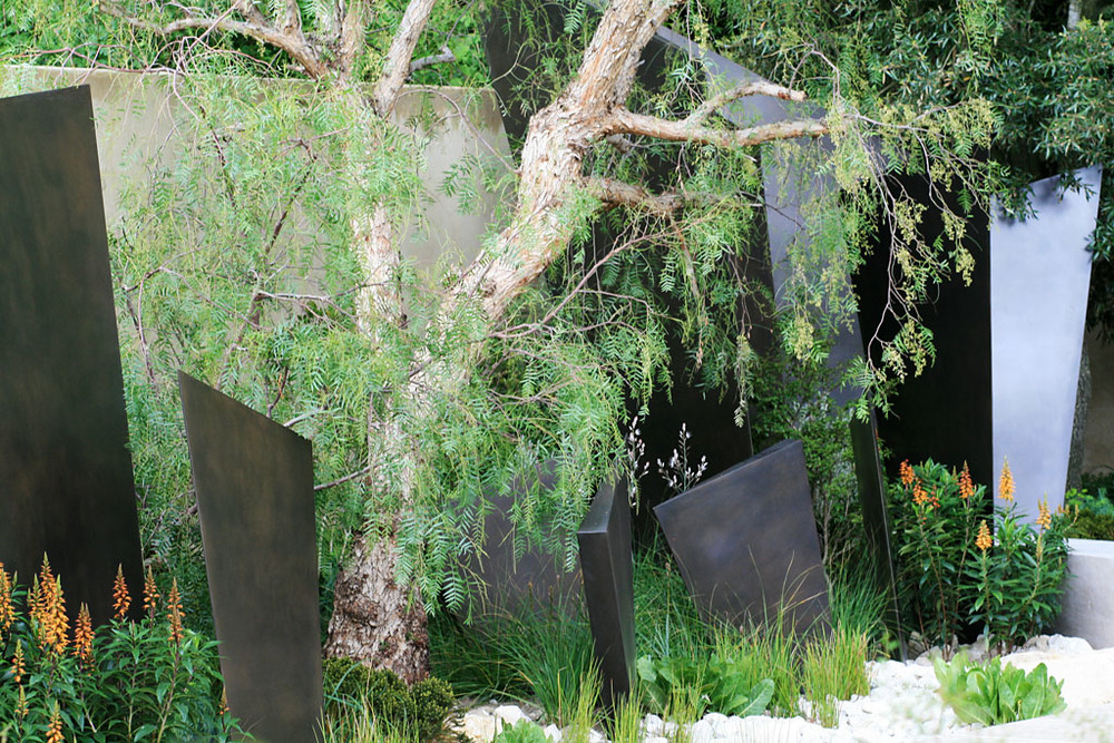 Detail from Andy Sturgeon's garden for  The Telegraph , RHS Chelsea Flower Show 2016