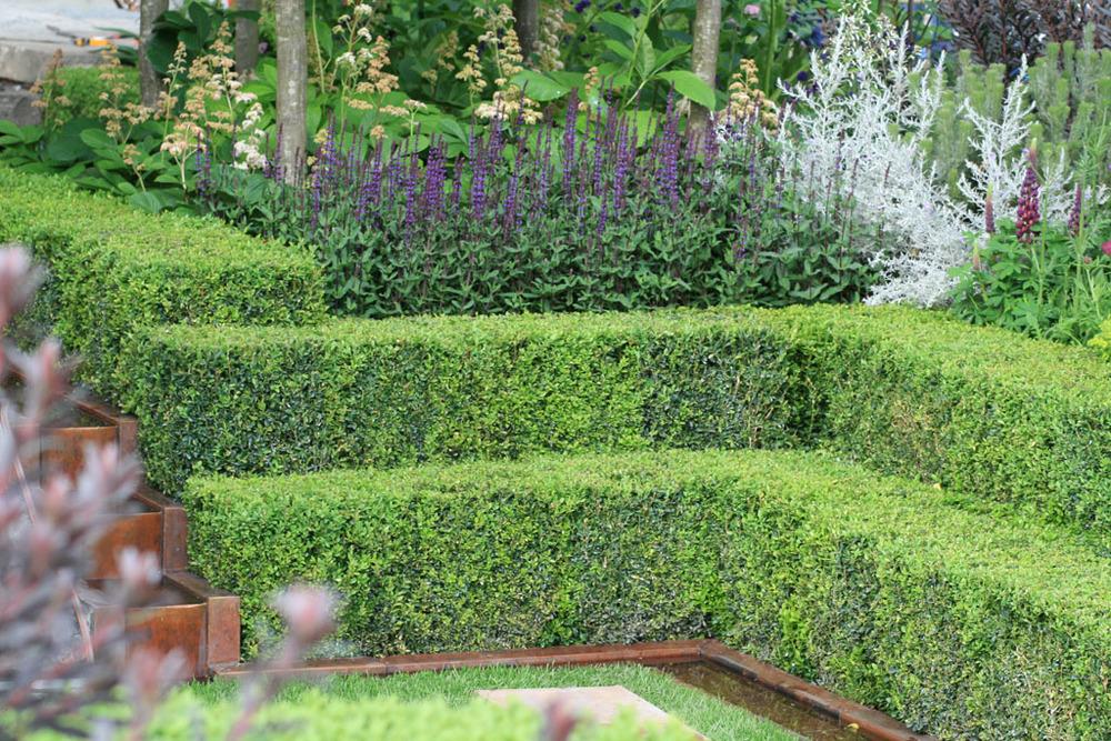 Detail from Charlie Albone's  Husqvarna Garden , RHS Chelsea Flower Show 2016