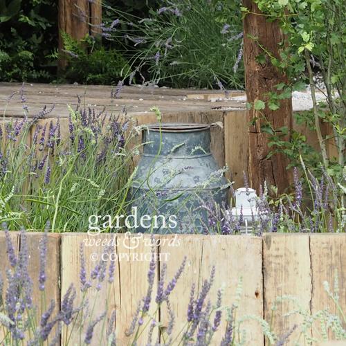 Detail from Shropshire Lavender's   Lavender Garden