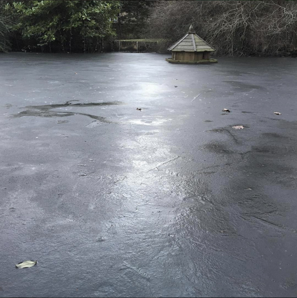 There have been frozen duck ponds…