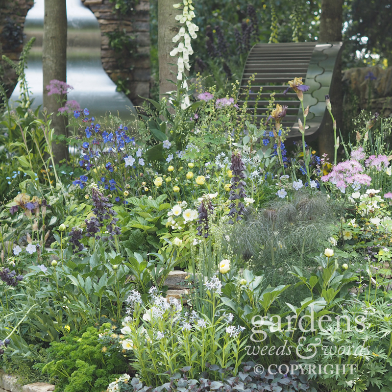 RHS Chelsea Flower Show 2017: detail from The Poetry Lover's Garden, designed by Fiona Cadwallader