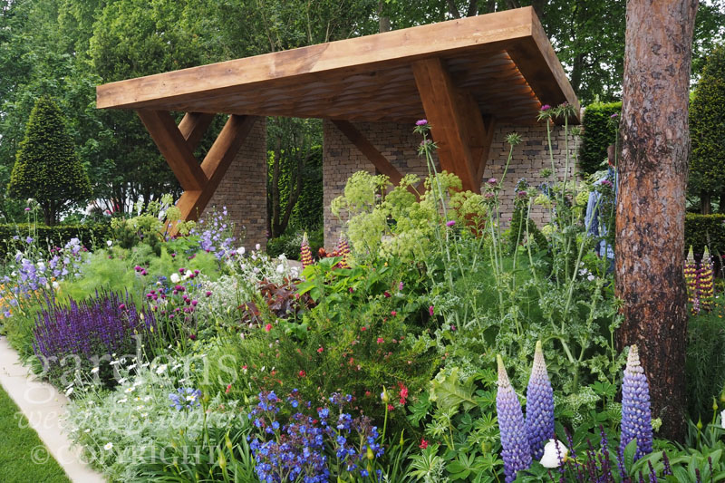 RHS Chelsea Flower Show 2017: detail from The  Morgan Stanley Garden , designed by  Chris Beardshaw