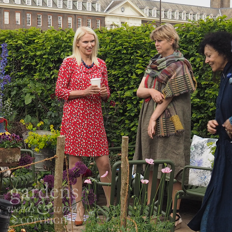 RHS Chelsea Flower Show 2017: How did you find working on a Chelsea garden? Was it a challenge, Anneka?