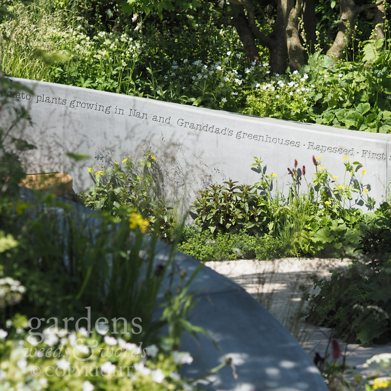 RHS Chelsea Flower Show 2017: detail from  The Jo Whiley Scent Garden , designed by  Tamara Bridge  and  Kate Savill
