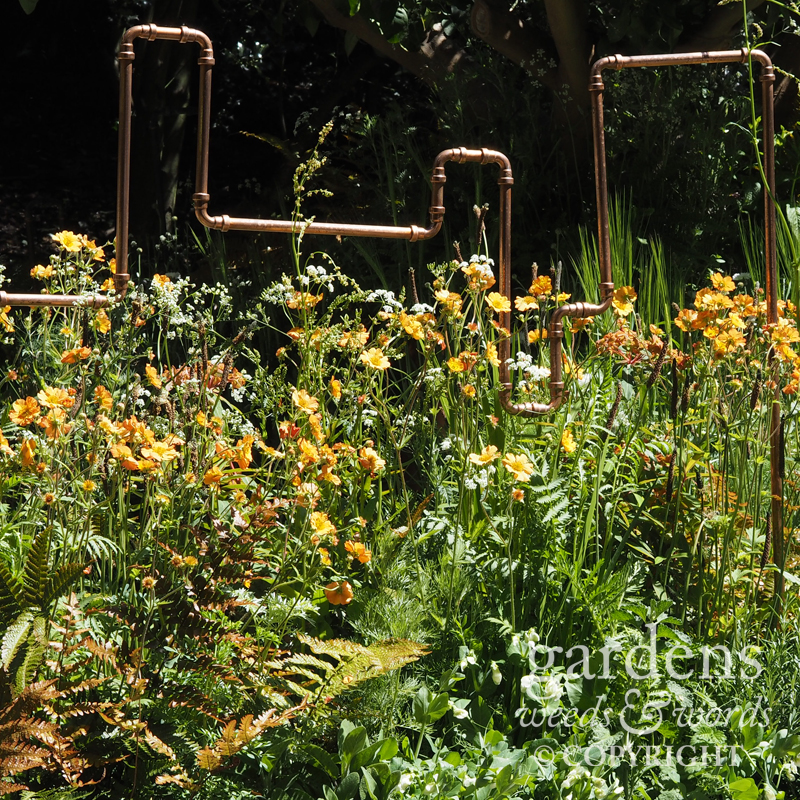 RHS Chelsea Flower Show 2017: detail from  The Seedlip Garden , designed by  Catherine MacDonald