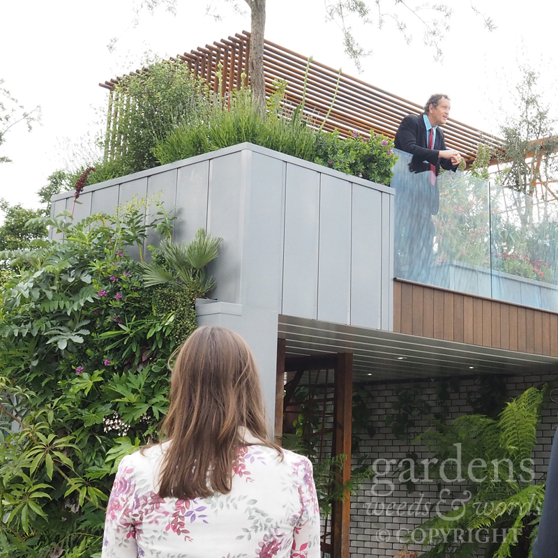 RHS Chelsea Flower Show 2017: Monty filming on   City Living , designed by  Kate Gould