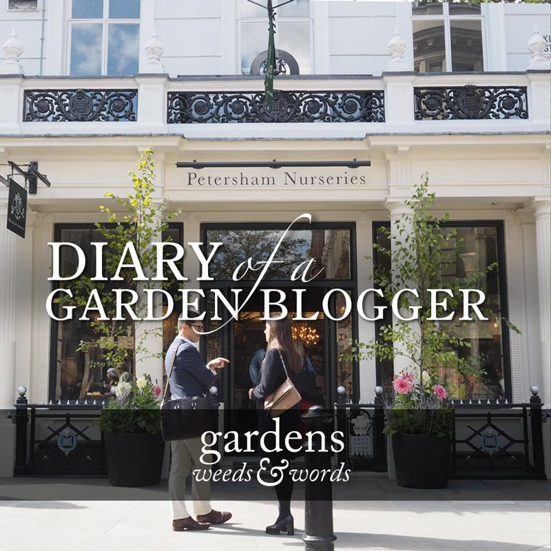 dgb_header_petersham_nurseries.jpg