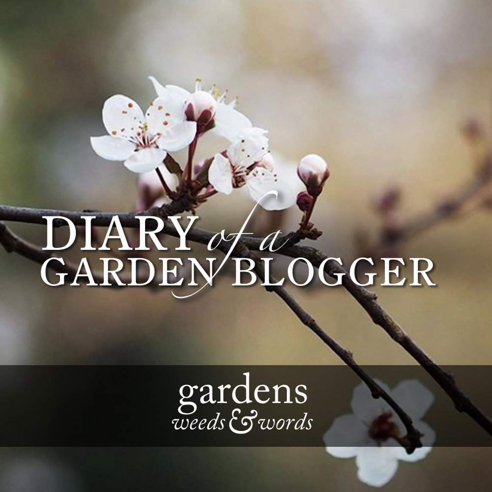 GWW_diary_march18_header.jpg