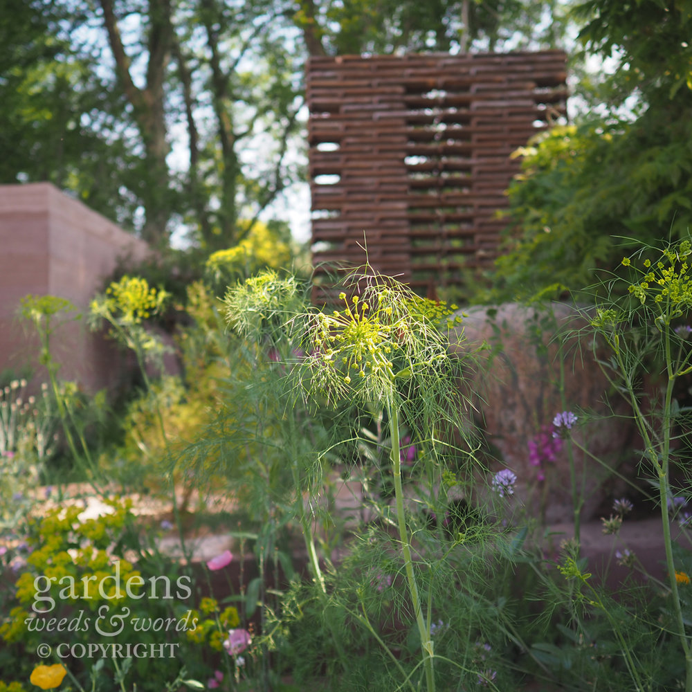 Detail from the M&G garden designed by Sarah Price, RHS Chelsea Flower Show 2018