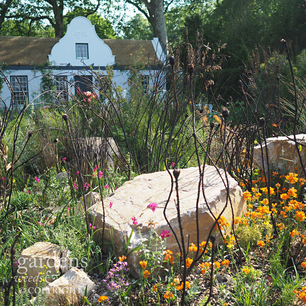 Detail from the Trailfinders South Africa garden designed by Jonathan Snow, RHS Chelsea Flower Show 2018