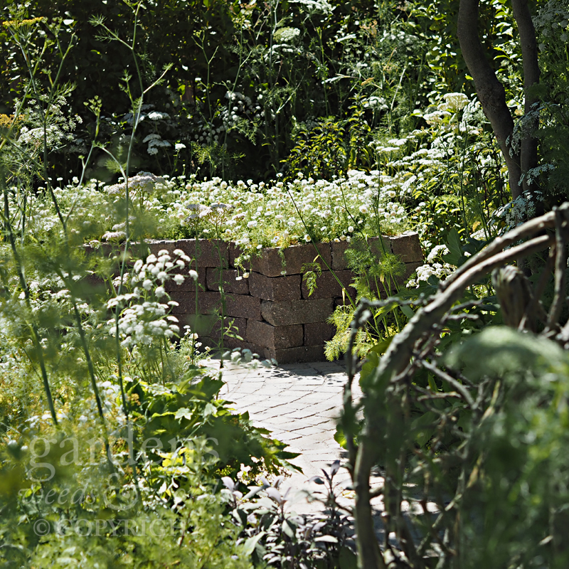 Detail from  Alexandra Noble's Health & Wellbeing Garden at the RHS Hampton Court Flower Show 2018