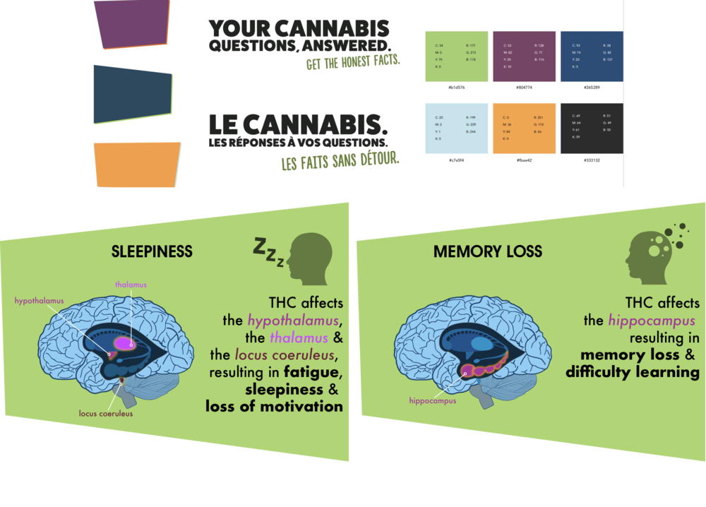 cannabis_info.png
