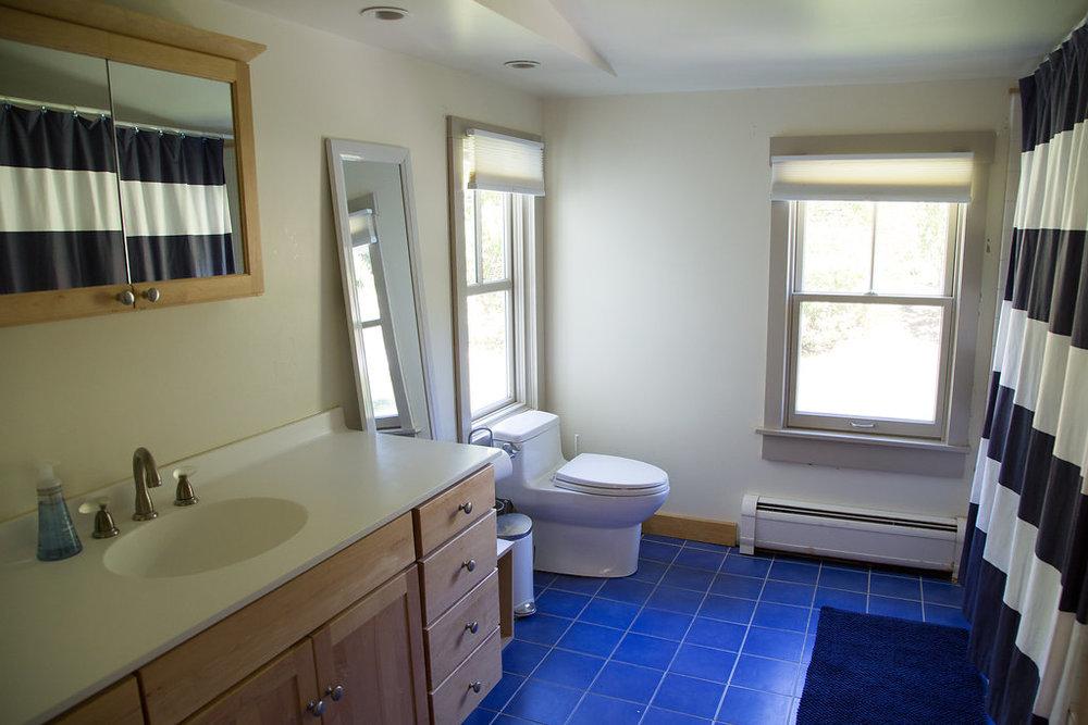 bluebathroom-1.jpg