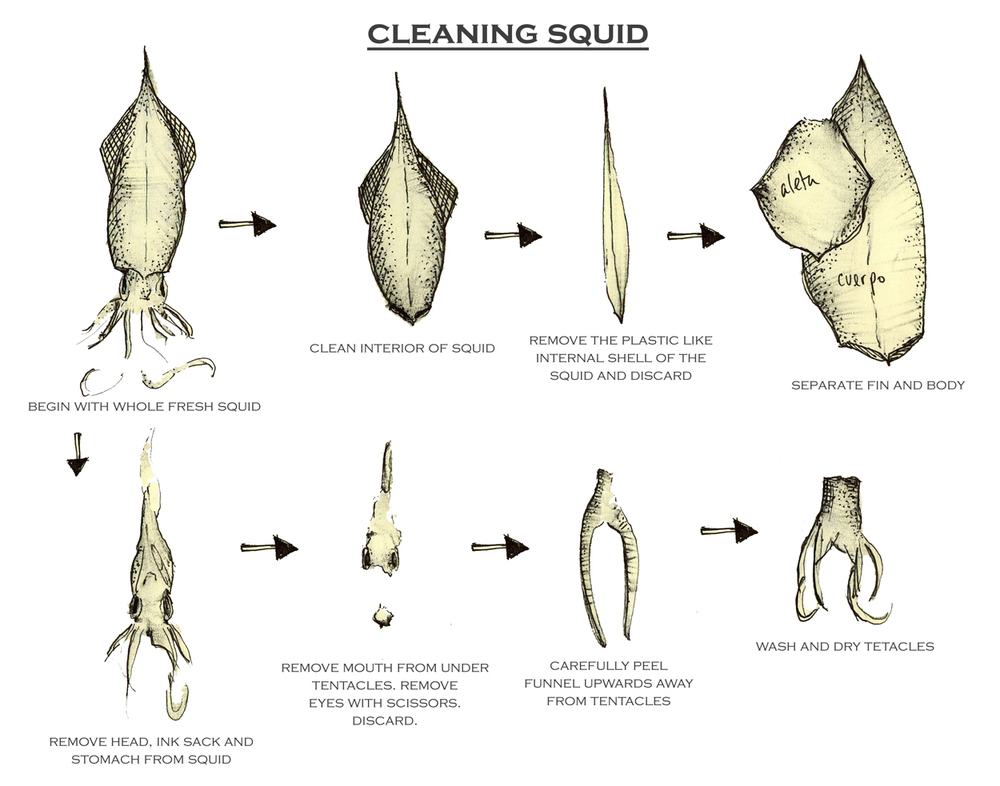 SLIDE1.cleaning_squid.jpg