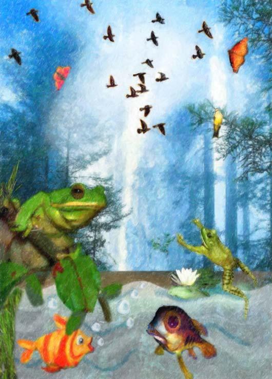 Camille-Barnes-book-illustration-frogs-fish.jpg
