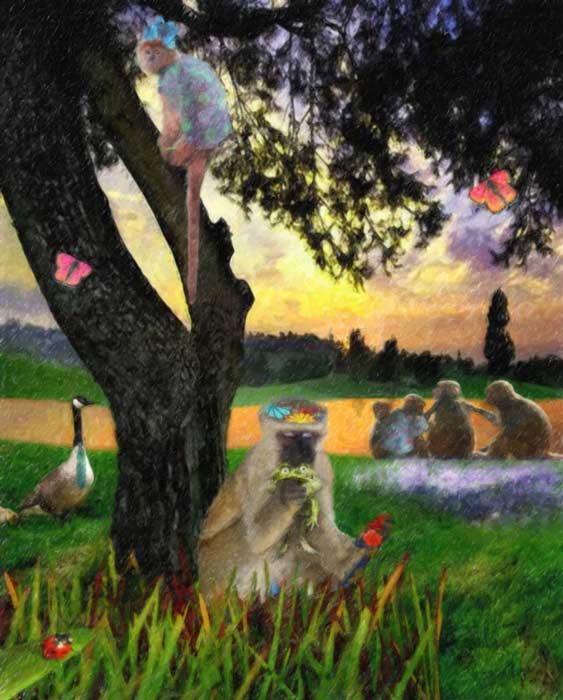 camille-barnes-childrens-book-illustration-monkeys.jpg