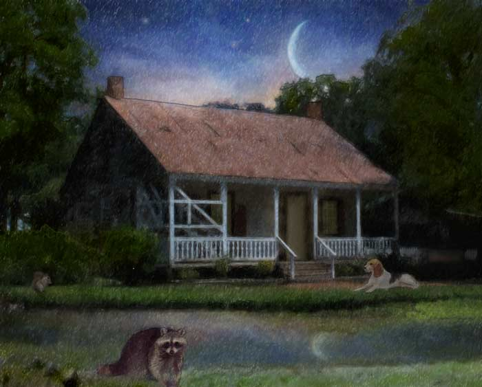 camille-barnes-childrens-book-illustration-bayou-night.jpg