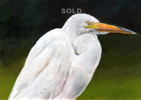Egret  A minitature Painting