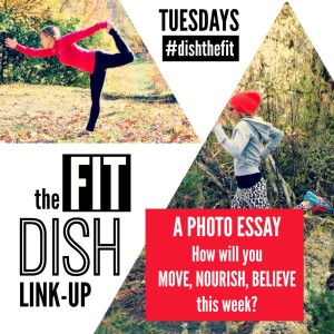 The Fit Dish Link-Up with The Fit Switch & Jill Conyers @brittanysuell
