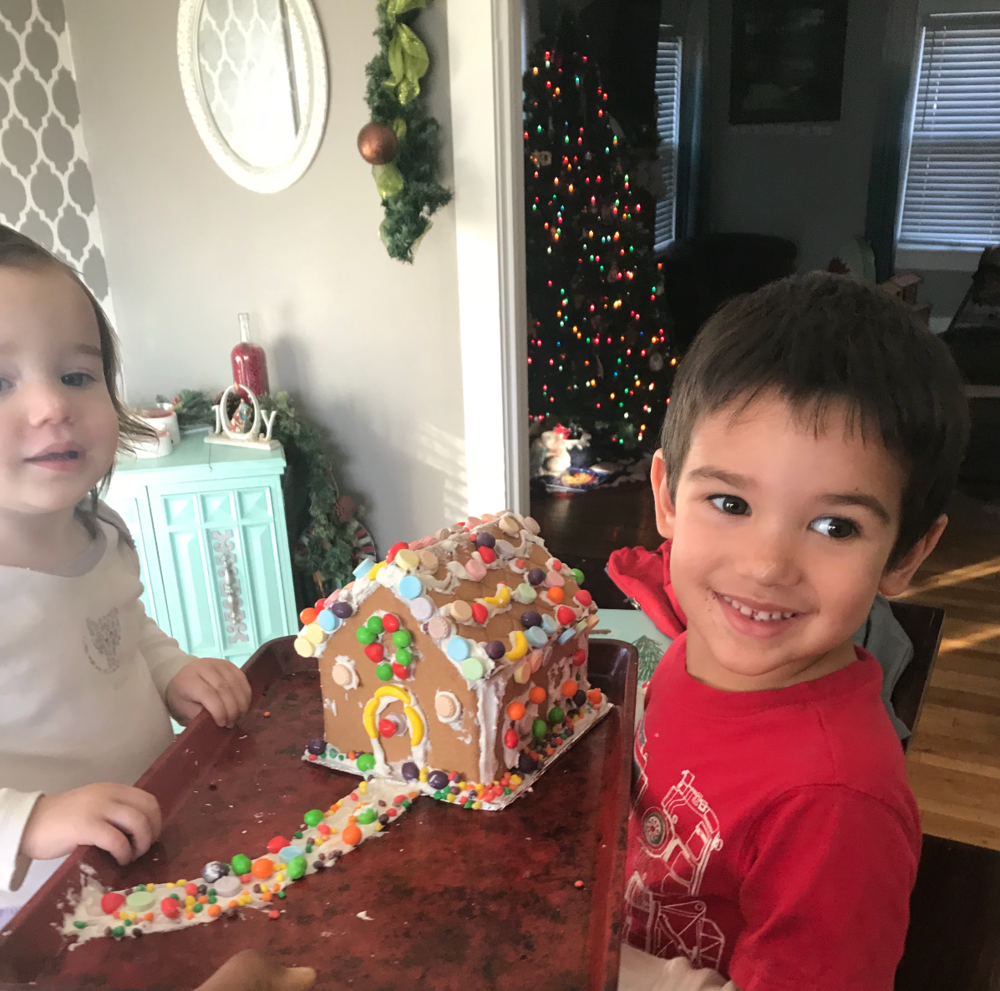 A Gingerbread house, in a sugar free home!