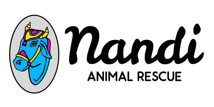 Nandi Animal Rescue