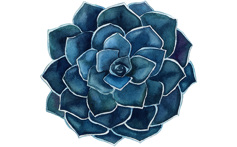 Liza-Morgan-Succulent-Blue-600-wide-left.png